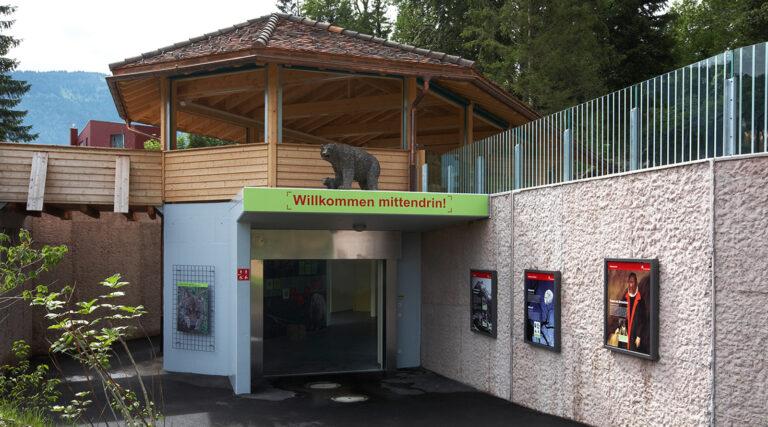 Ausstellung Bär und Wolf